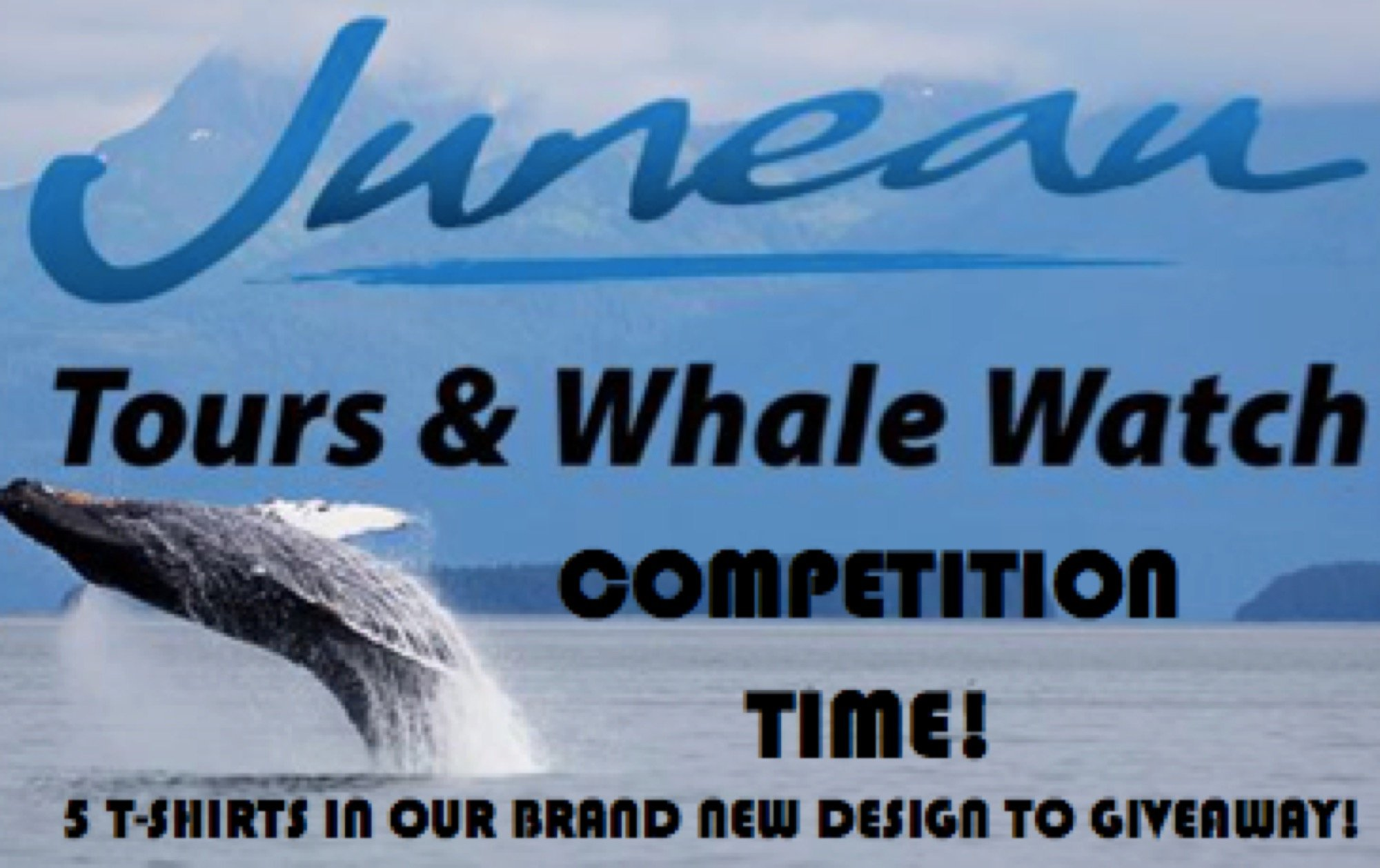 Juneau Tours and Whale Watch Competition 2017: The results are in!